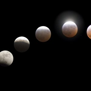 Calici Stellari con Eclissi di Luna